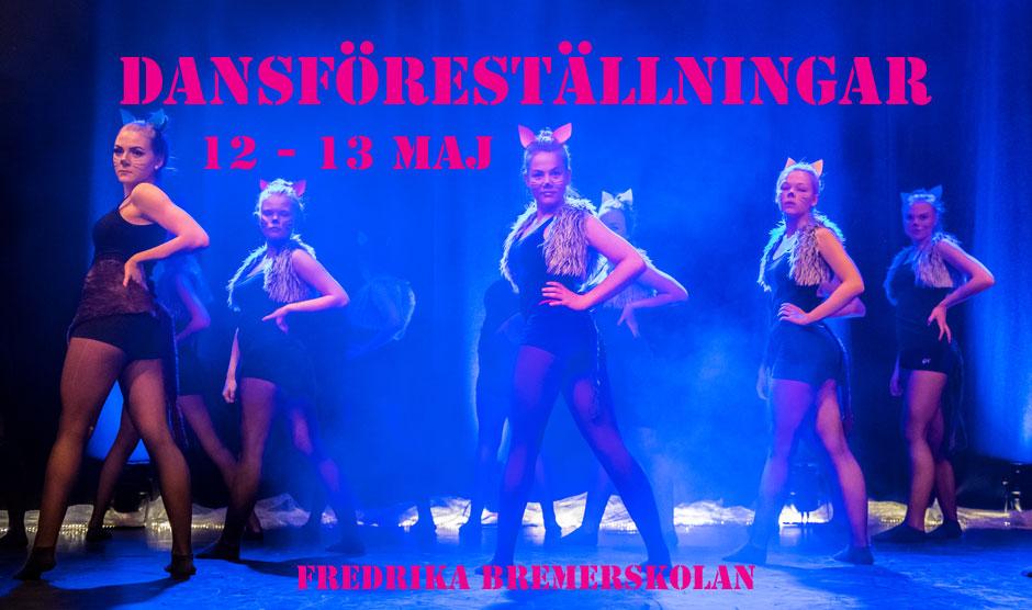 Dansföreställning Haninge Dansstudio 2017